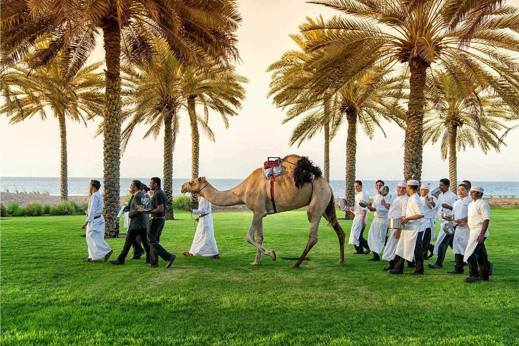 CamelMuscat RESIZED 2