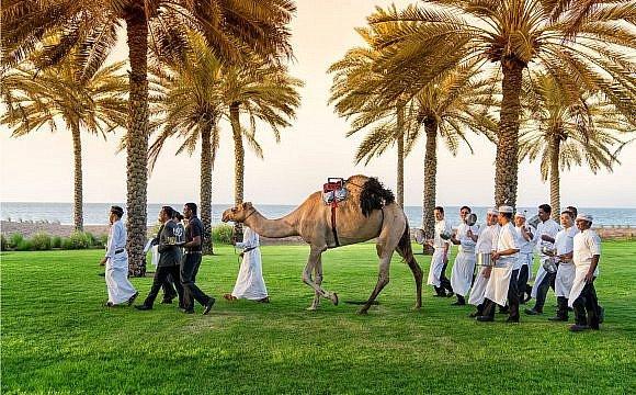 CamelMuscat RESIZED